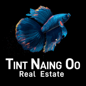 Tint Naing Oo Real Estate